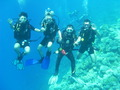 Reisetipp Tauchbasis Sunshine Divers Club Shark Bay