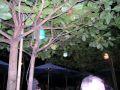 Restaurant Cemara Beach
