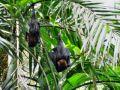Reisetipp Reptilien- und Vogelpark