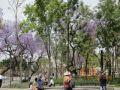 Stadtpark Alameda