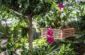 Reisetipp Raffeiner Orchideenwelt