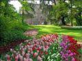 Reisetipp Messer Tulipano e Castello di Pralormo