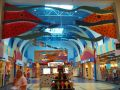 Katy Mills Mall: cose da fare