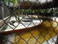Atrakcja turystyczna Everglades Safari Park