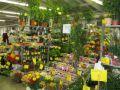 Holesovice Markt