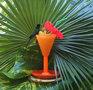 Barneys Kolibri Garten Jamaika