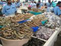 Things to do in Fish market Dubai