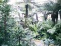 Pflanzenschauhäuser