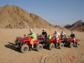 Reviews- Quad Tour / Quad Safari