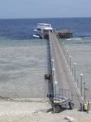 Reviews- Carnelia Diving Resort