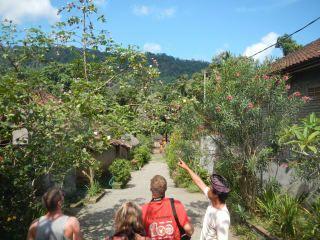 Avis - Village Bali Aga