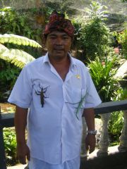Reviews- DSF Bali Tour - Excursions with Augustine