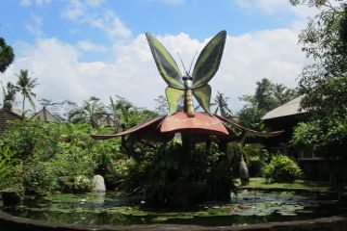 Reviews- Tabanan Butterfly Park
