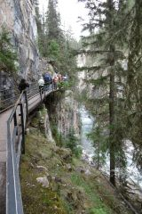 Avis - Johnston Canyon