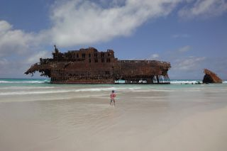 Reviews- Ship Wreck Cape Santa Maria