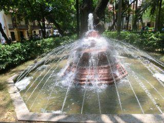 Avis - Parque de Bolivar
