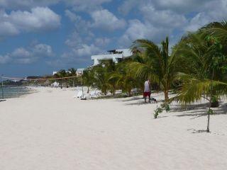 Avis - Carlos' n Charlie's Beach Club