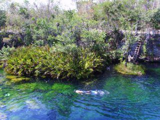 Reviews- Cenote Eden River