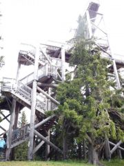 Eichhörnchen Turm / Eichhörnchenblick