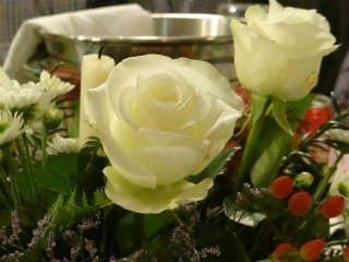 Restauracja Margherita