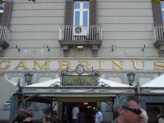 Avis - Café Gambrinus