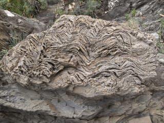 Wanderweg Via Dell Amore In Riomaggiore Holidaycheck