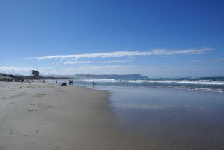 Reviews- Waihi Beach