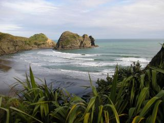 Reviews- Piha Beach