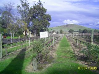 Reviews- Fergusson Winery