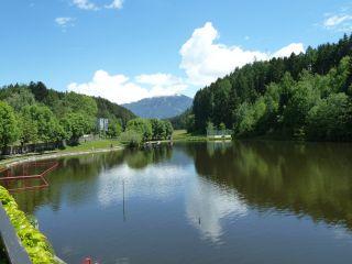 Avis - Lac Natterer