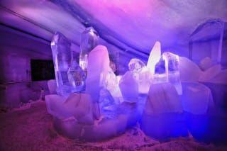 Avis - Palais de glace naturelle