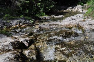 Avis - Sentier de Dolina Strążyska