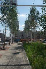 Avis - Place Szembeka