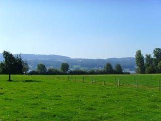 Avis - Ville de Greifensee