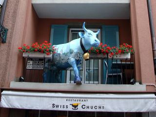 Reviews- Swiss Chuchi Restaurant