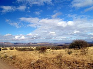Reviews- Tsavo West National Park
