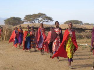 Reviews- Masai Village