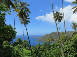 Park linowy Morne Coubaril Estate