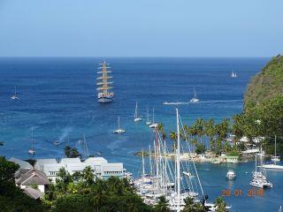 Avis - Marigot Bay