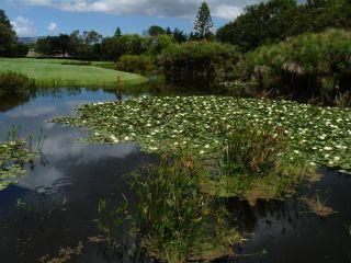 Avis - Royal Golf Club du Cap