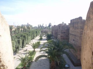 Reviews- Taroudant Walls and Medina
