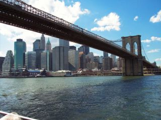 Avis - Brooklyn Bridge