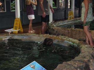 Reviews- Akvárium Key West