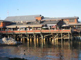 Avis - Quartier Old Fisherman's Wharf