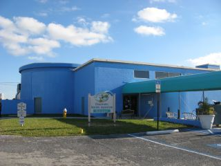 Reviews- Clearwater Marine Aquarium