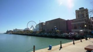 Reviews- Navy Pier