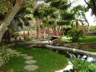 Bilder jard n acu tico risco bello wasserpark puerto for Jardin acuatico