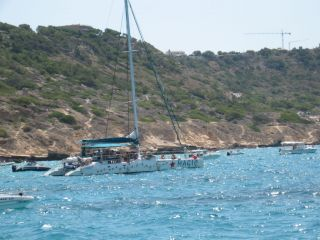 Reviews- Magic Catamaran Tour Palma