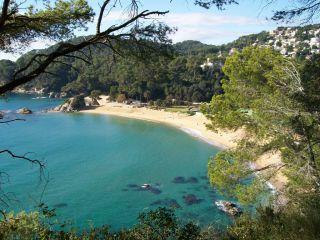 Reviews- Santa Cristina Coast
