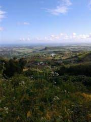 Avis - Aussichtspunkt Long Mountain
